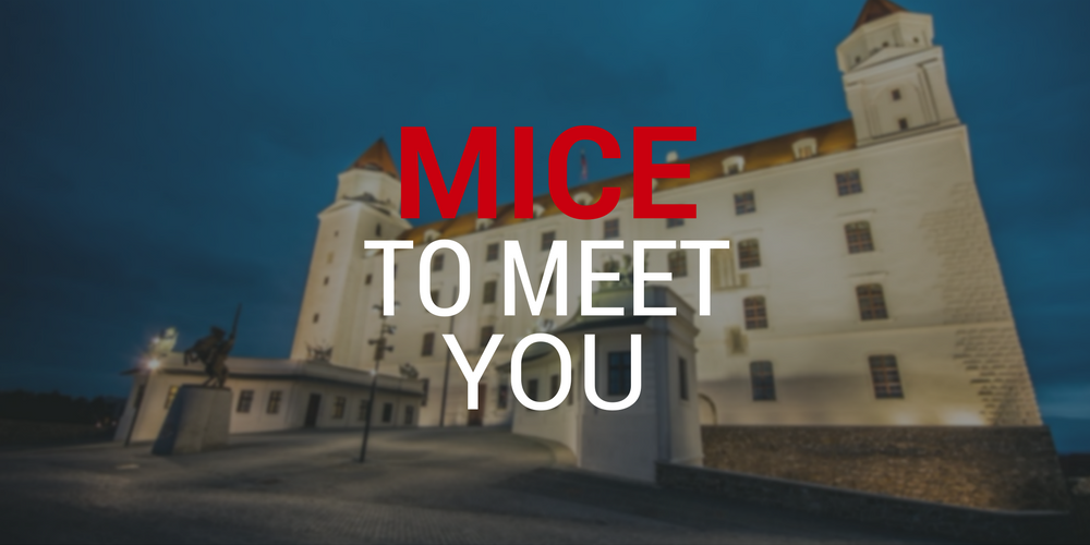 mice-to-meet-you